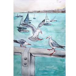'Seagulls at sunset on the Bay'__Waterco