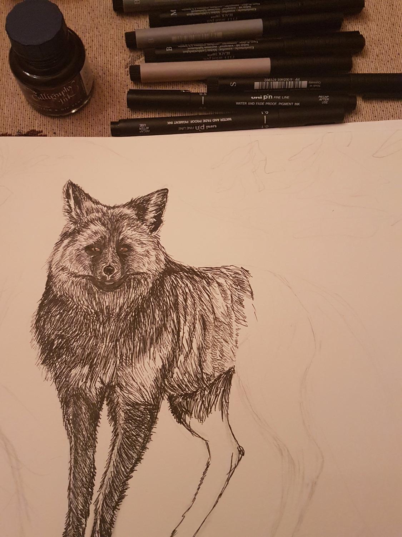 Silver fox in progress