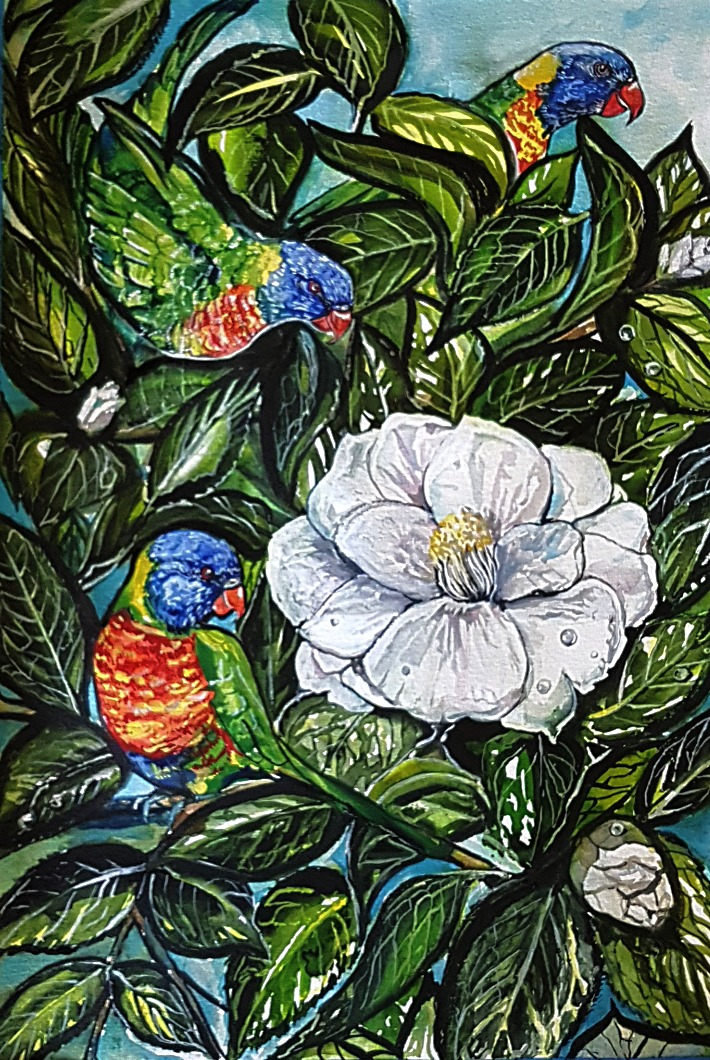 Rainbow lorikeets with Camellias