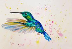 Hummingbird flight i