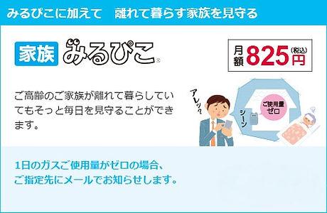 pic_mirupiko04.jpg
