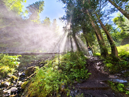 What to do at Wells Gray Provincial Park