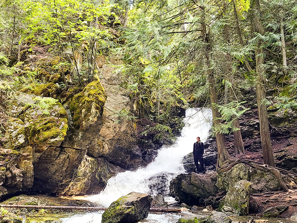 British columbia, hiking, hike,  outdoors, after-work hikes, Vernon, BX Creek Trail