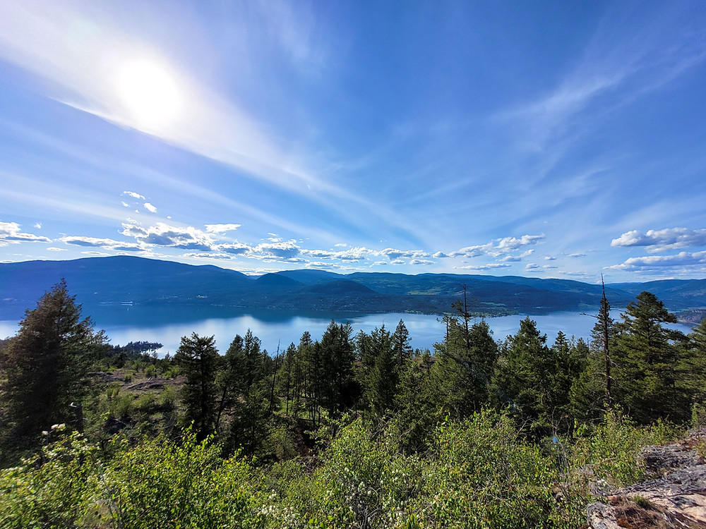 Predator Ridge, Okanagan Lake Loop Lookout, scenery, easy hikes, nature, outdoors, lake