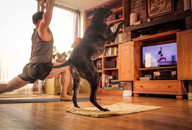 Q4 - Yoga 02g.jpg