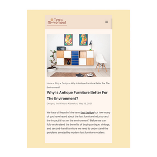 WHY IS ANTIQUE FURNITURE BETTER FOR THE ENVIRONMENT? - Blog post for Terra Movement