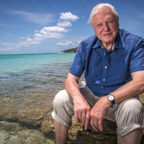 """David Attenborough says that we are at a """"crisis moment"""" for the planet"""