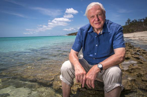 "David Attenborough - ""The moment of Crisis has come"""