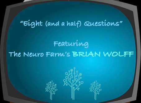"""Eight (and a half) Questions"" with Brian Wolff"
