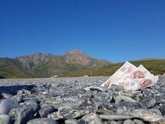 Ukron, il conio dall'anno 2504 Marine d'Albo - Corsica