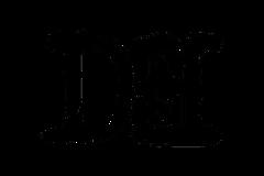 DustyEye - Logo 3.png
