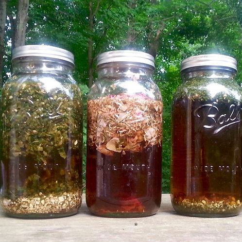Introduction to Herbal Infusions Workshop Wednesday September 16th 2020