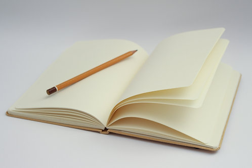 Journal Writing Series - Session 4 - April 30th
