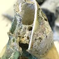 fragment of bone china, egyptian paste and volcanic glaze