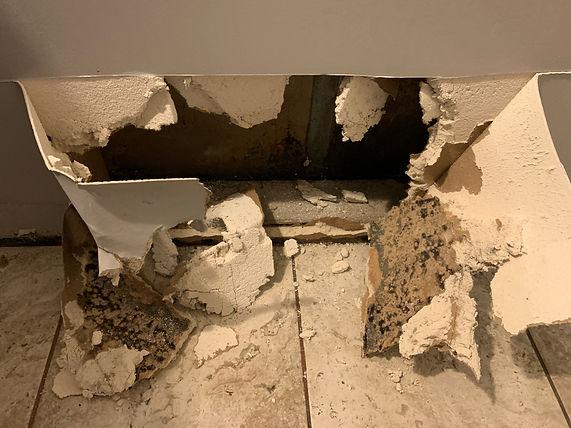 mold in bathroom wall.jpg