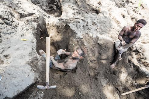 Digging for megapode eggs, Papua New Guinea