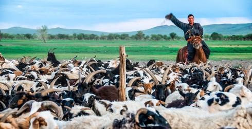 Nomadic living, Mongolia