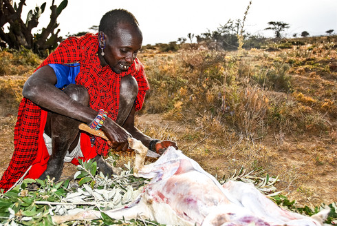 Living with the Masai people, Kenya