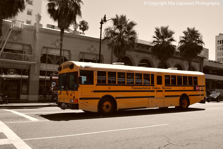 LA bus 2 copy