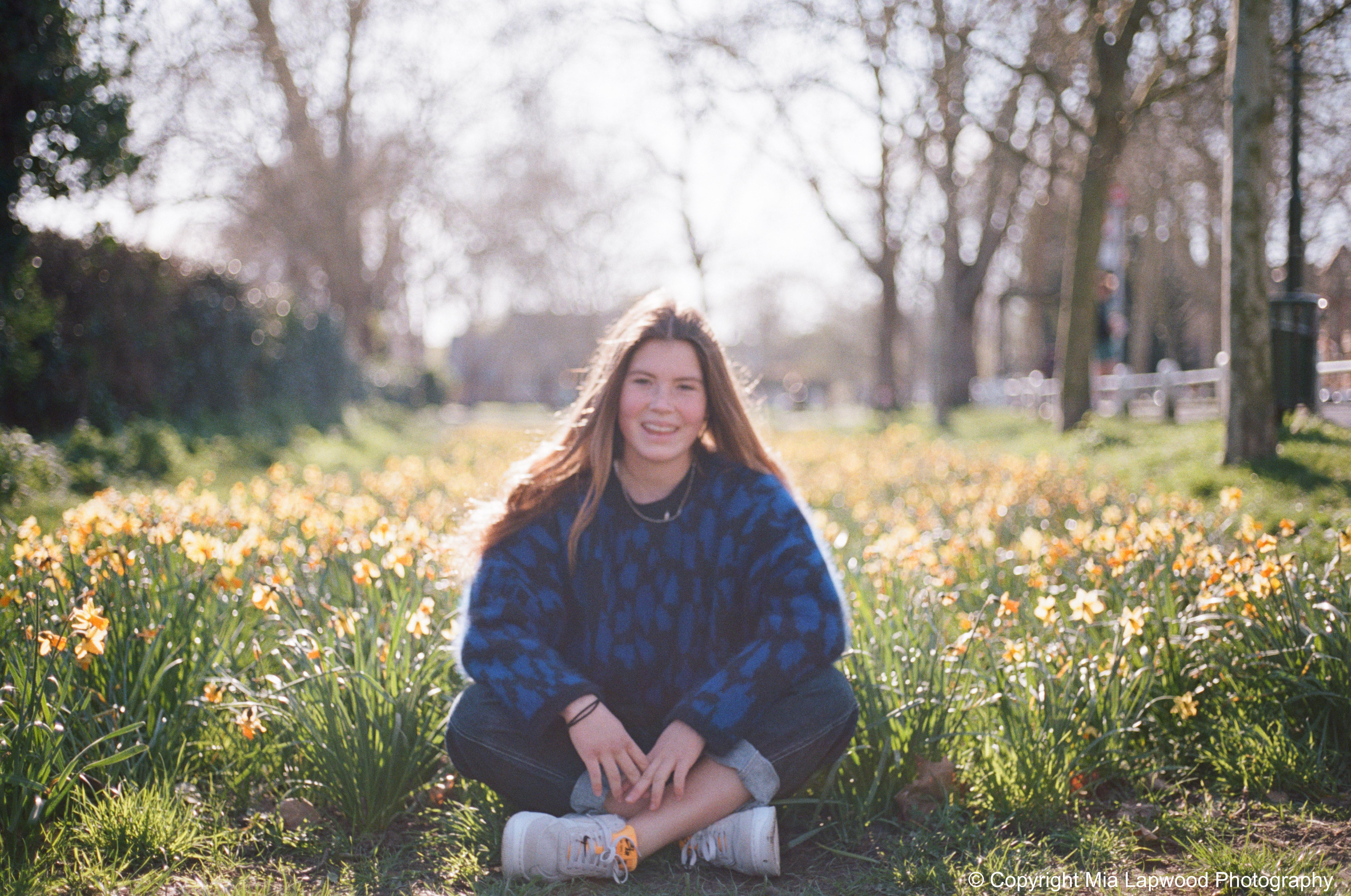 Santa daffodils