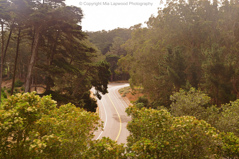SF road