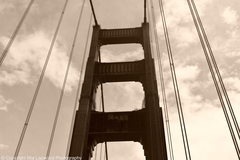 SF bridge 3