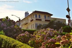SF House 4