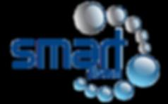 Smart company logo.png