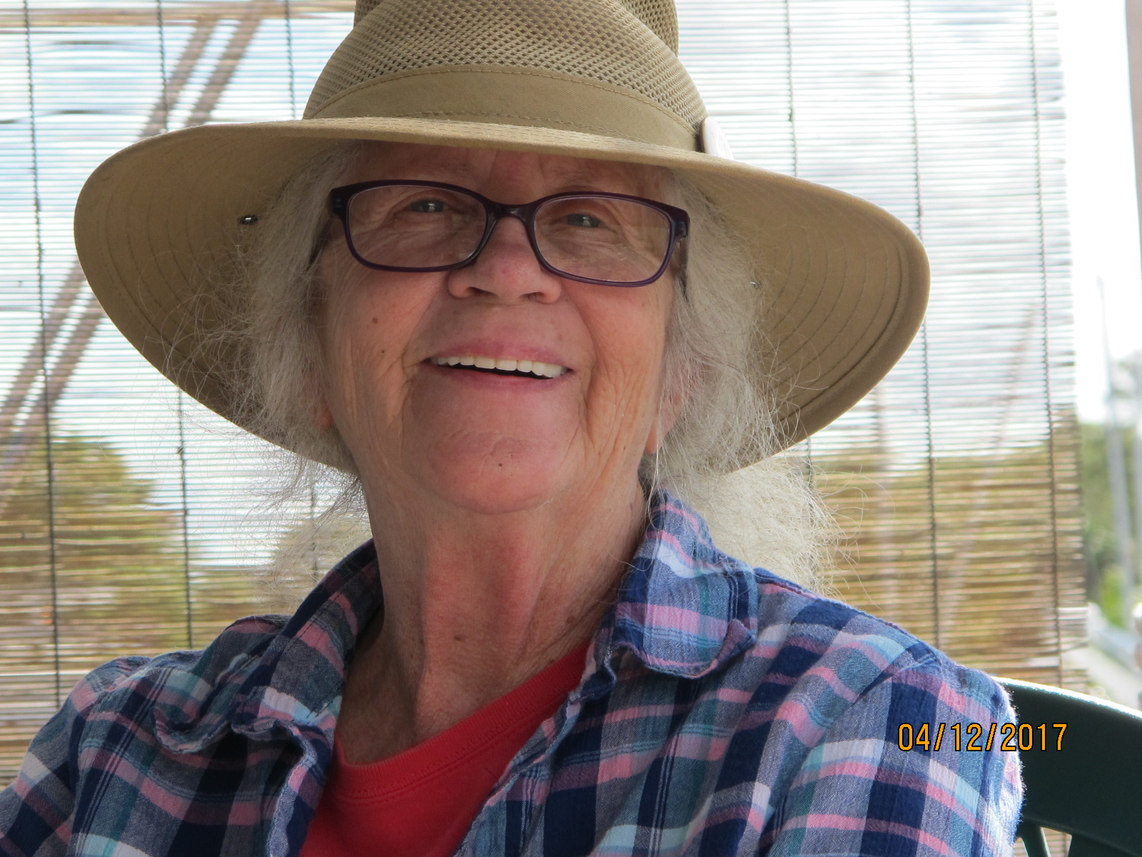 Lynn Skapyak Harlin