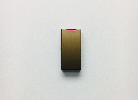 RC10 Metallic Gold