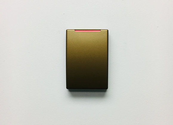 RC40 Metalllic Gold