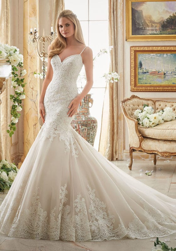 This is one of the dresses in the shop by Mori Lee