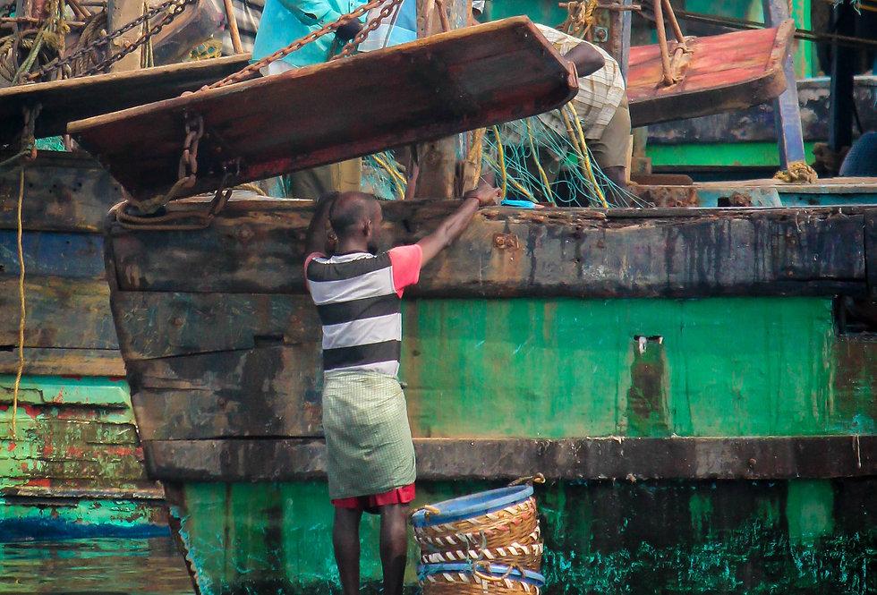 chennai fishing