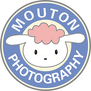 Mouton Photography 小羊攝影​