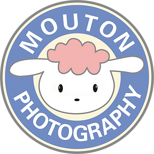 Mouton Photography 小羊攝影