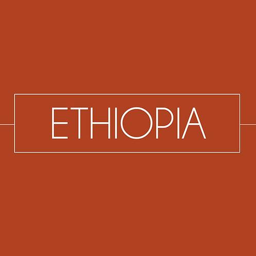 Ethiopia Coffee (Biftu Gudina FT) (12oz)