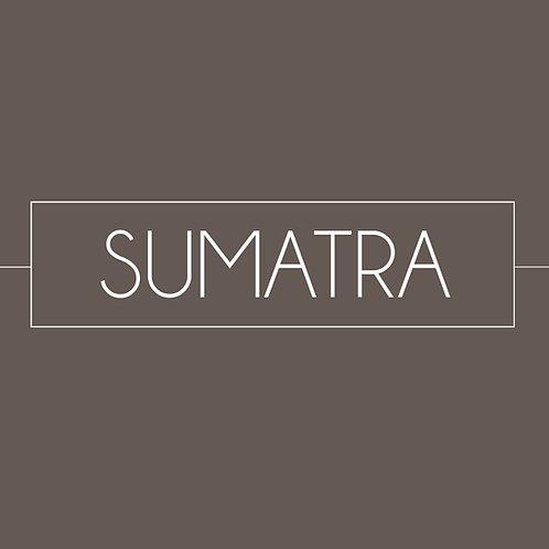 Sumatra Coffee (Gayo Bourbon) (12oz)