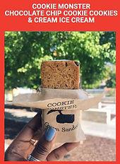 Cookie Monster image.JPG