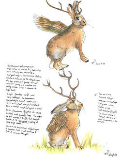 Wolpertinger-final draft