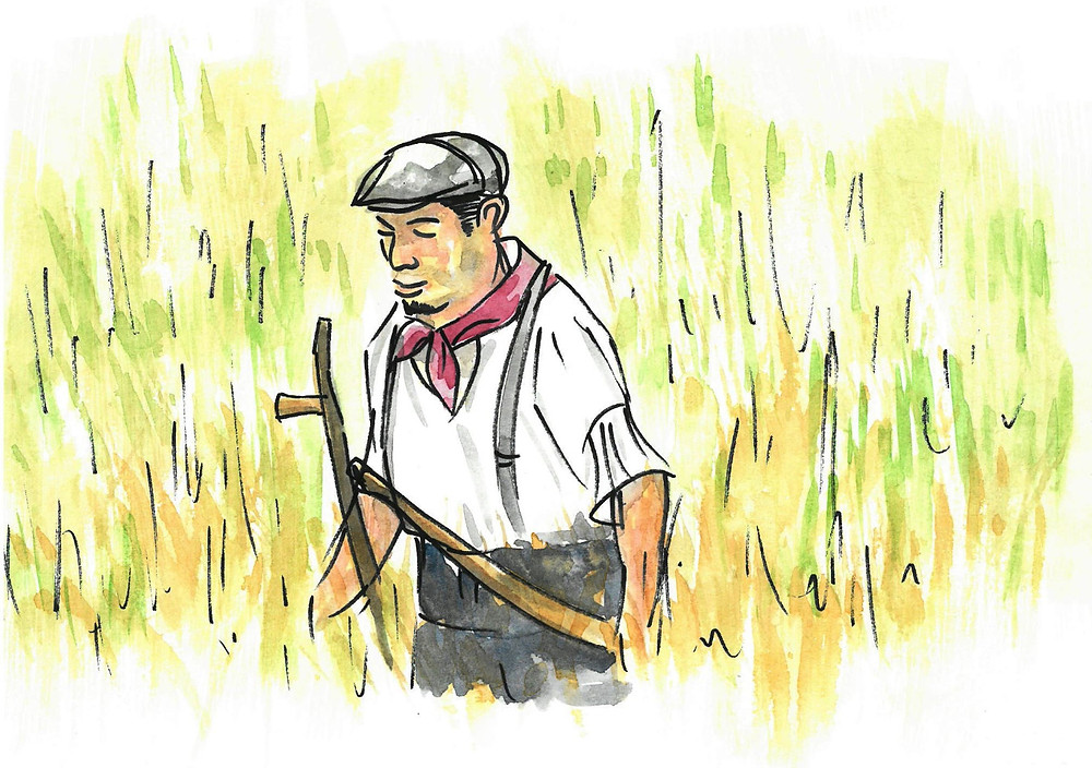 Ross Farm Farmhand 2, ink and watercolour painting