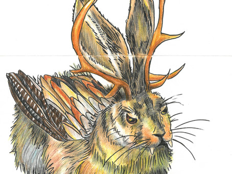 watercolour WOLPERTINGER