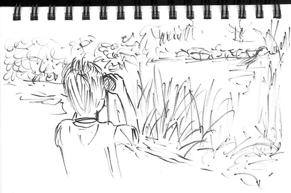 B with Watching Heron, ink sketch