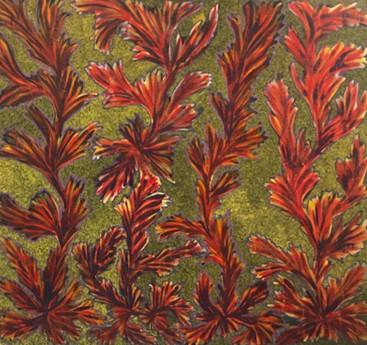 Bush Flower (1999)