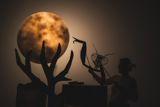 Boy with Mantis & The Moon
