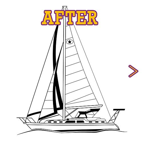 Custom vector Line drawing