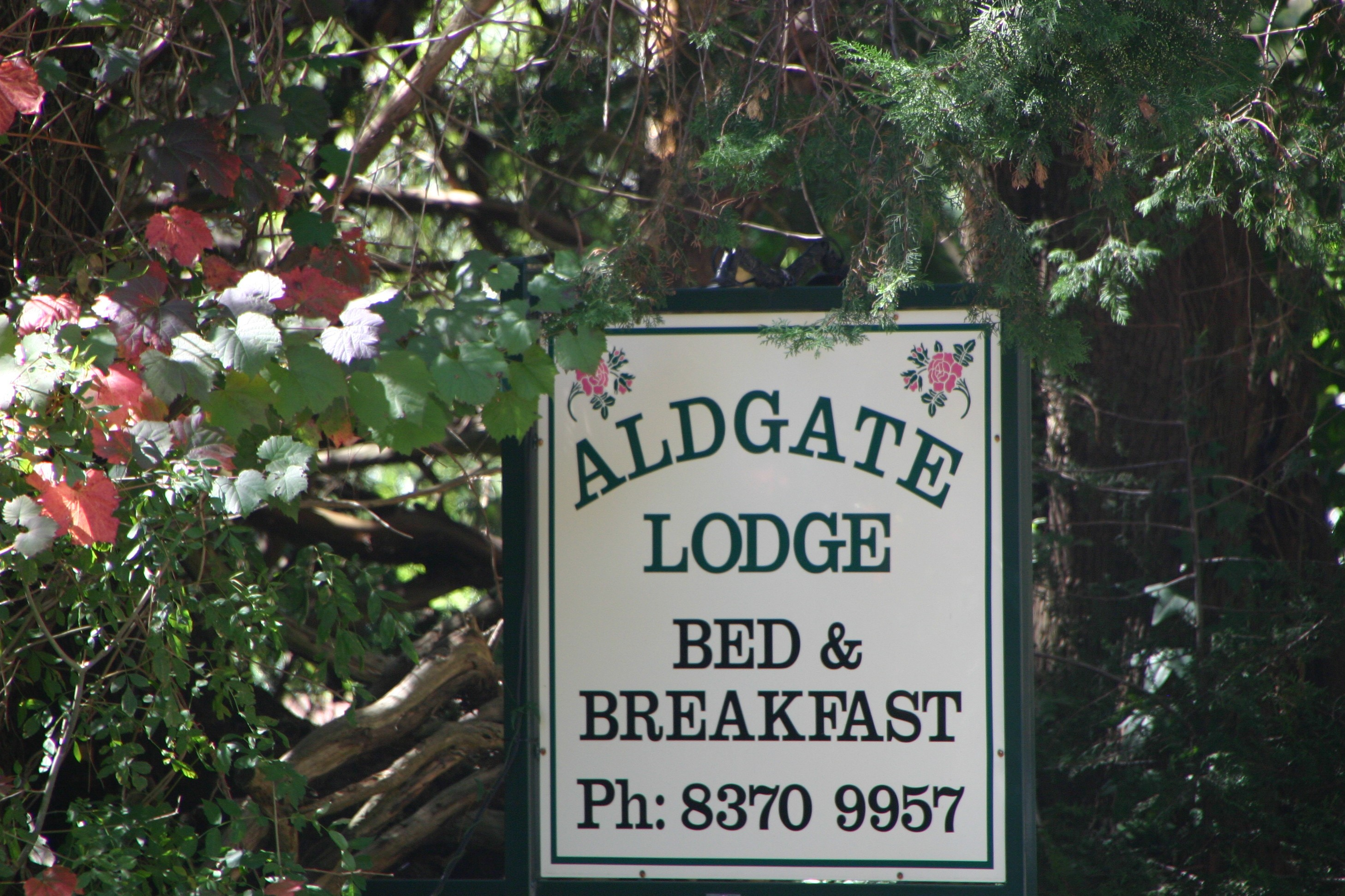 Aldgate Lodge B&B