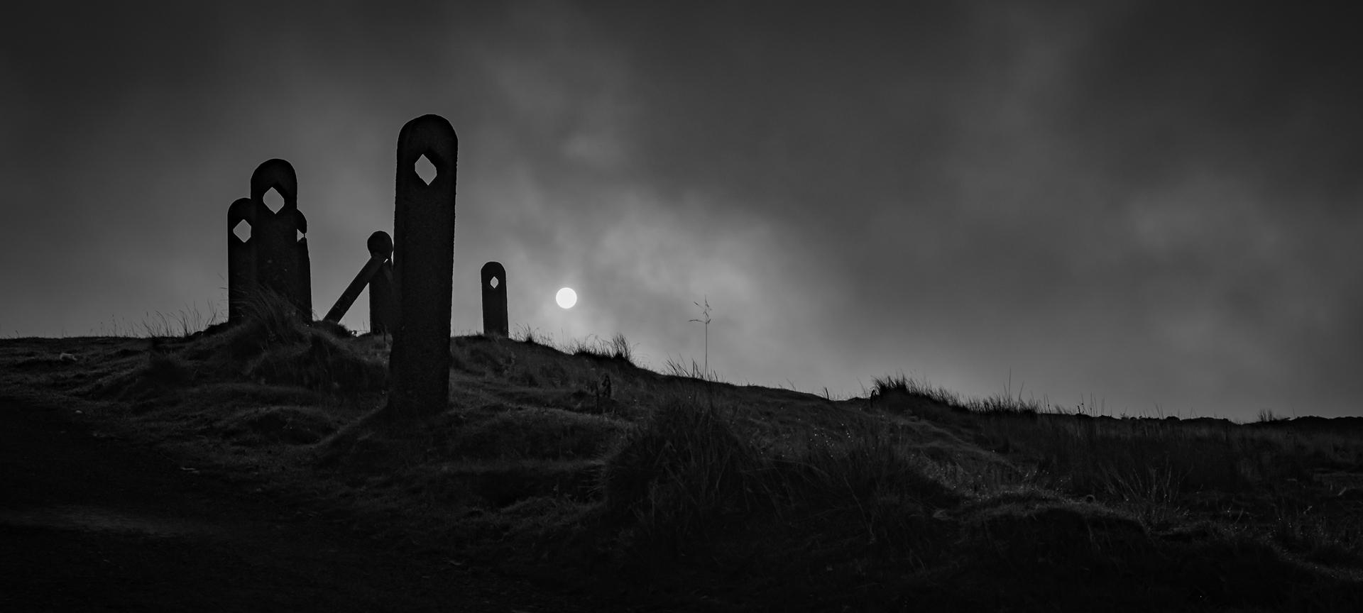 Sunrise on a Misty Moor