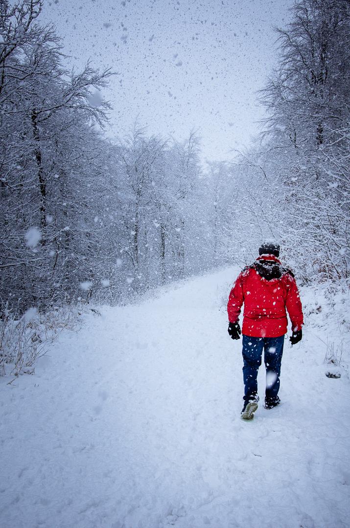 Isolation Walk Guisboroug