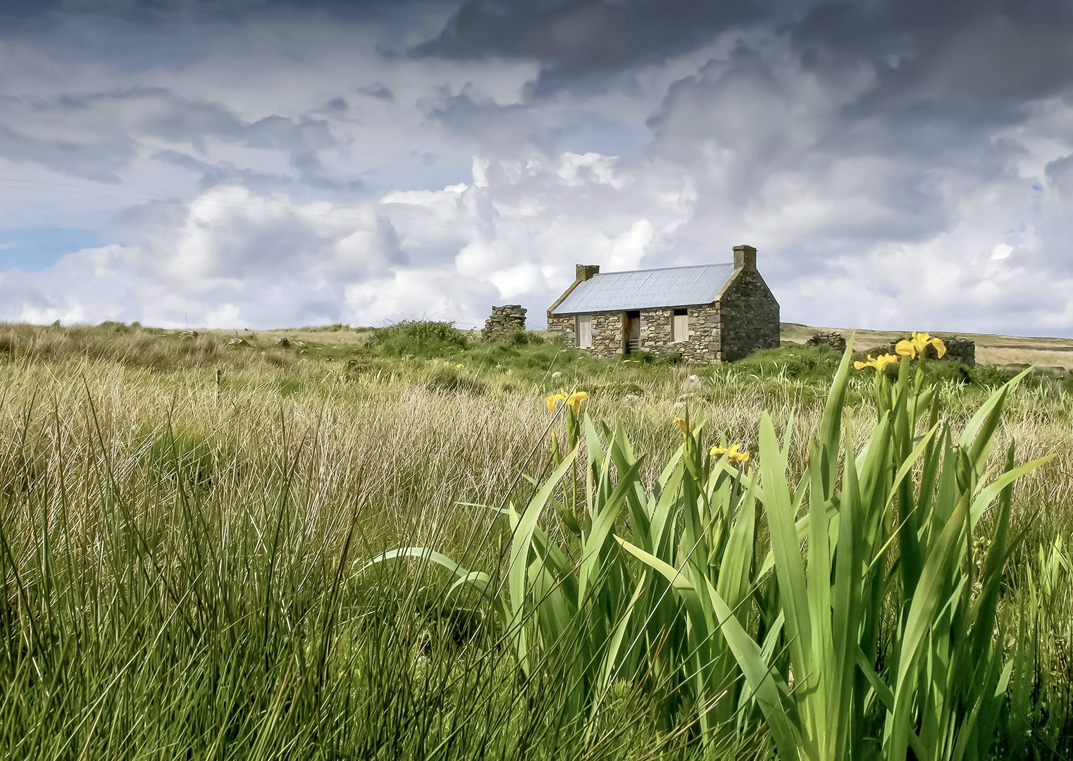 Lonely Croft