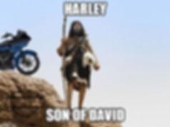 Harley son of David.jpg
